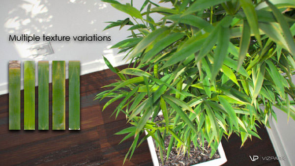 VP_Interior_Plants_catalog-5